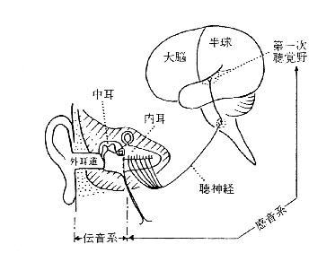 1) 聴覚障害とは - 独立行政法人...